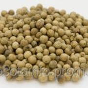 Перец зеленый 50 гр. фото
