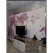 Роспись стен фактурными красками фото
