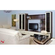 """Мебель для дома""""Спектр» фото"""