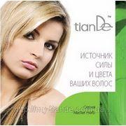 Буклет «Источник силы и цвета ваших волос» 100312 фото
