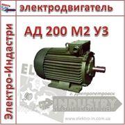 Электродвигатель АД 200 М2 У3 фото