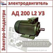 Электродвигатель АД 200 L2 У3 фото