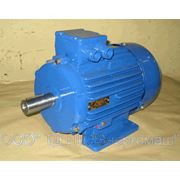 Электродвигатель АМУ132М2, АМУ132М4, АМУ132S2, фото