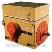 Высоковольтные электродвигатели ДАЗО4 фото