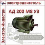 Электродвигатель АД 200 М8 У3 фото