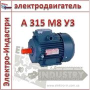 Электродвигатель А 315 М8 У3 фото
