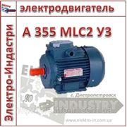 Электродвигатель А 355 MLC2 У3 фото