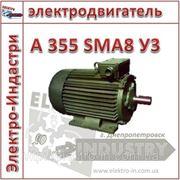 Электродвигатель А 355 SMA8 У3 фото