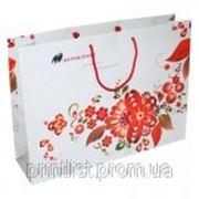 Пакет из мелованной бумаги (370х560х120 мм) №8