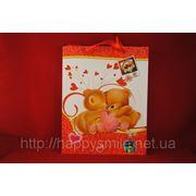 Подарочные пакеты 0052 фото