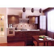 Изготовление встроенной кухонной мебели и техники на заказ. фото