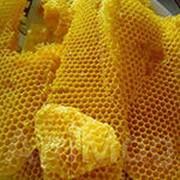 Воск пчелиный фото