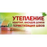 фото предложения ID 377015