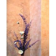 Декоративные венецианские штукатурки ДЕКОРАТИВНАЯ ПРОВАНСАЛЬСКАЯ ШТУКАТУРКА декоративная роспись