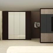 Шкаф с системой складных дверей фото