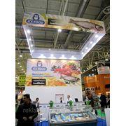 """Дизайн выставочного стенда для """"Ice Food"""" на выставке """"World Food Ukraine 2011"""", Киев, Украина. фото"""