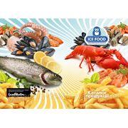 """Дизайн многостраничной брошюры (брошуры) для """"Ice Food"""", Киев, Украина фото"""