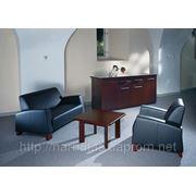 Мягкая мебель FLORA фото