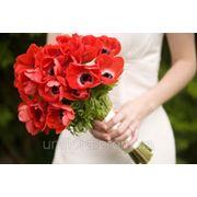 Заказать цветы Киев фото