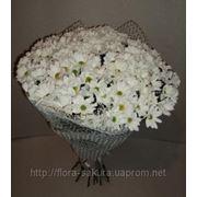 Доставка ромашек по Киеву, доставка цветов Киев, служба доставки цветов и подарков фото
