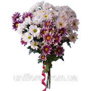 Доставка цветов Феодосия фото
