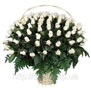 Корзина белых роз фото