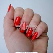 Покрытие ногтей Shellac фото