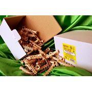 Дюбели WAVE 8х60 mm потай с ударным шурупом в картонной коробке - ISO 9001 фото