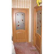 """Двери ПВХ/ПО """"Аве"""" фото"""