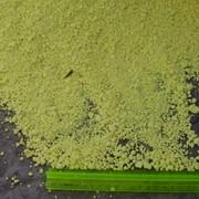 Сера газовая гранулированная фото