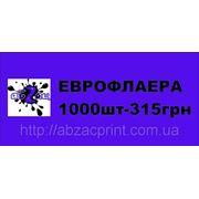 Еврофлаер Одесса фото
