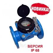 Счетчик холодной воды с импульсным выходом ВСХНд-250 IP 68 фото
