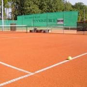 Теннисит фото