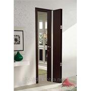 Дверь-книжка фото