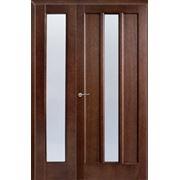 Двери шронированные двустворчатые Троя ПО фото