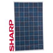 Солнечная батарея SHARP ND 245W-24V, poly