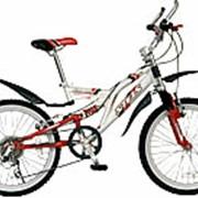 Велосипед детский Pilot 250 фото