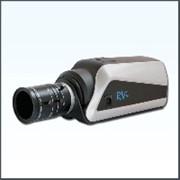 IP-камеры RVi-IPC21WDN RVi-IPC20DN фото