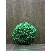 Самшит шар искусственный D-20 см (без кашпо) фото