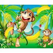 Фотообои детские. Обезъянки в джунглях. фото