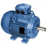 Электродвигатели IP55 – Чугунный корпус – высокая эффективность - IE2