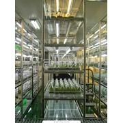 Услуги медицинских научно-исследовательских институтов фото