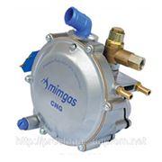 Редуктор газовый MIMGAS (метан) фото