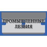 фото предложения ID 3950940