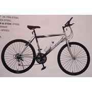 Велосипеды Pigeon FP415-9A фото