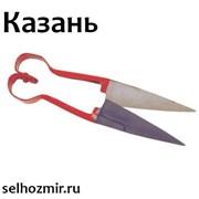 Ножницы для стрижки овец качественные фото