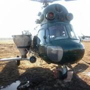 Внесение минеральных удобрений вертолетом Ми-2 фото