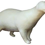 Полноразмерный манекен барсука фото