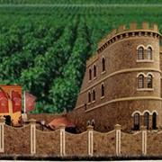 """Экскурсии в """"Chateau Cojusna"""" фото"""