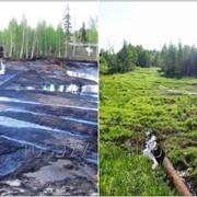 Рекультивация загрязненных нефтью и нефтепродуктами почвы, воды и нефтешламов фото